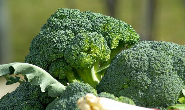 польза капусты брокколи